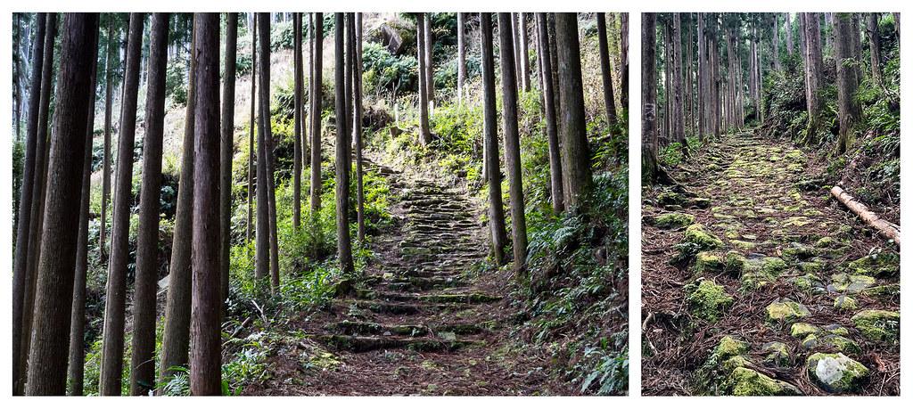 koguchi to nachi uphill