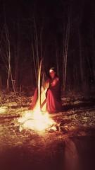 Cerridwen - Elven Harpist