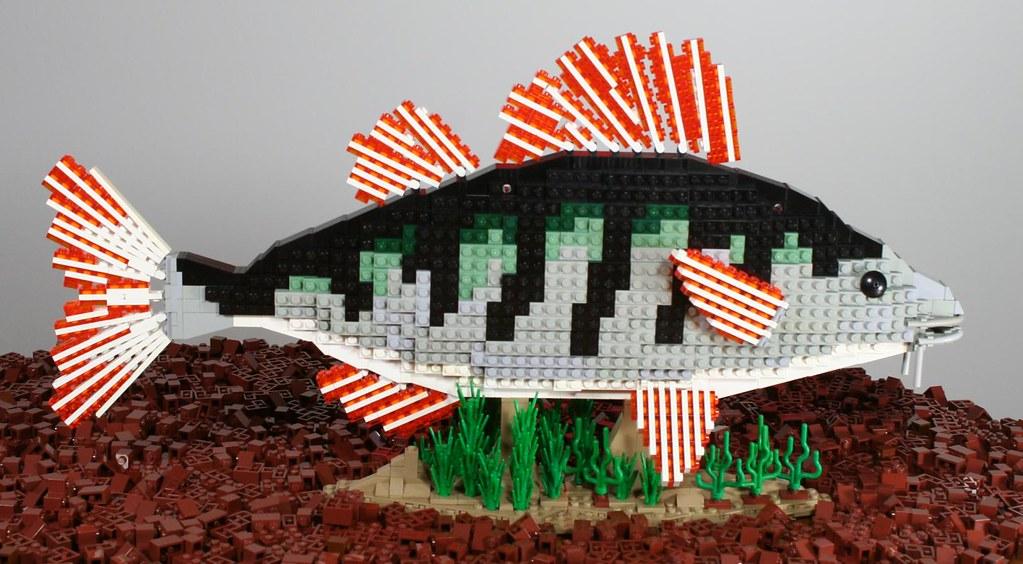 Το Ζωικό Βασίλειο από LEGO  - Σελίδα 4 26124413026_b018f8ffc7_b