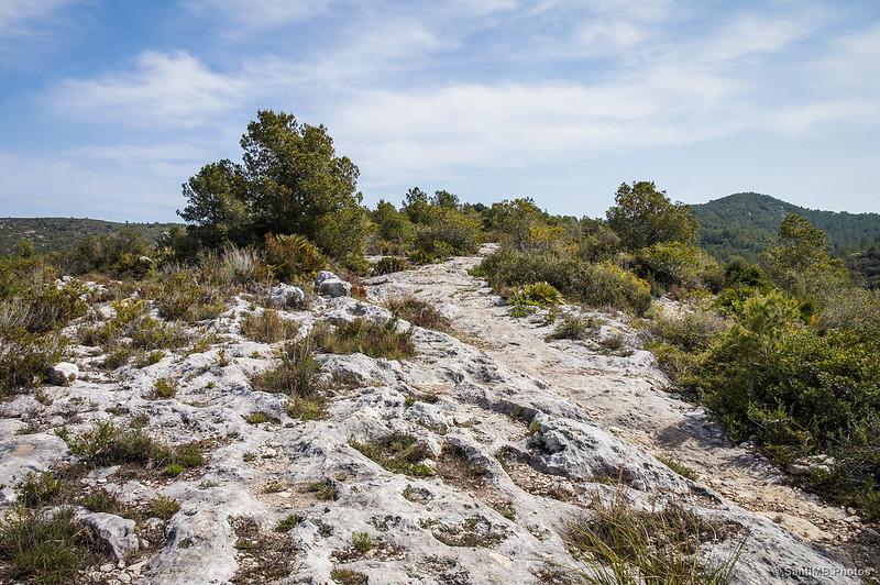 Camino de roca