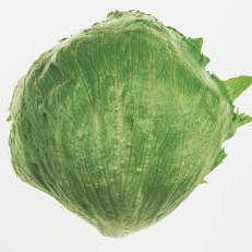 lettuces-0002