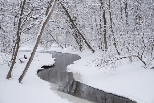 Creek and Winter Wonderland