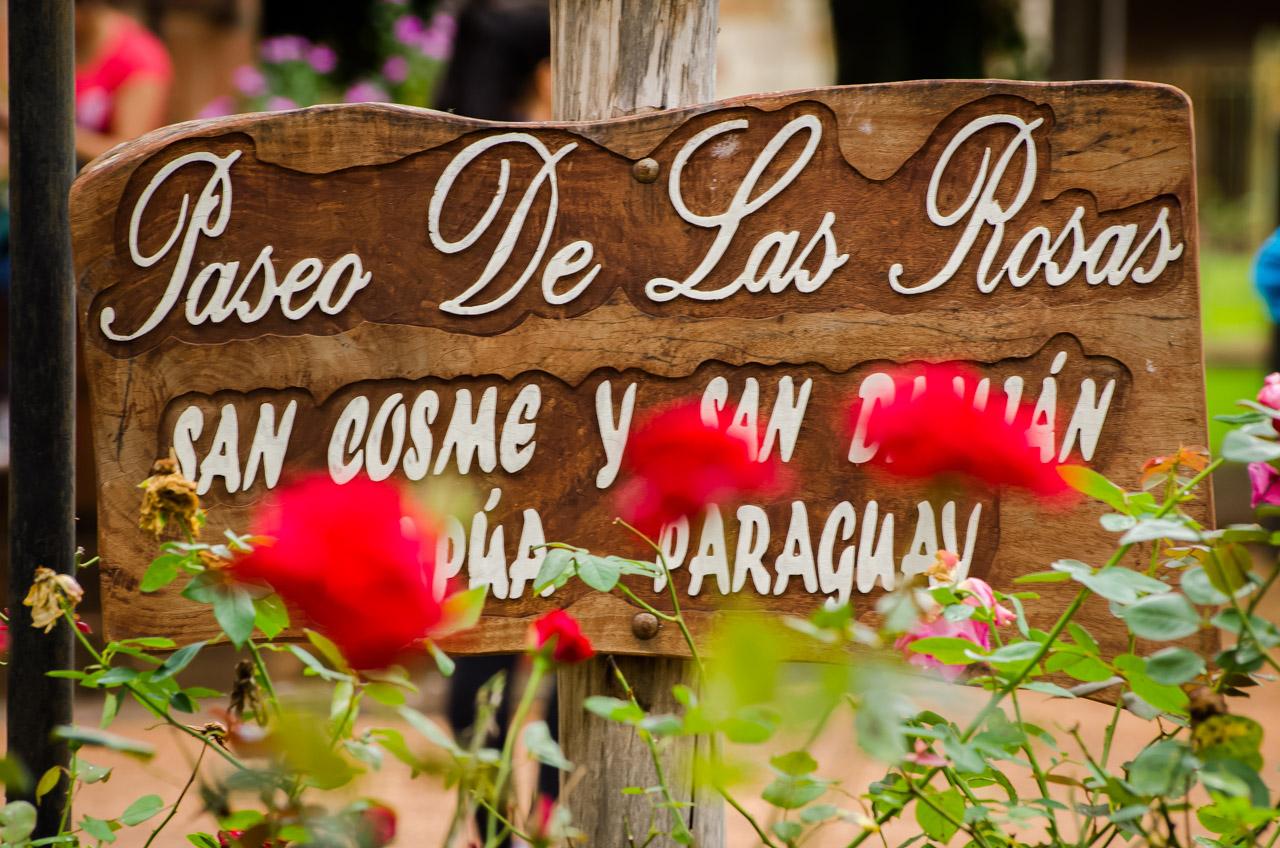En la plaza central de la ciudad de San Cosme y Damián, del departamento de Misiones, se pueden hallar hermosos jardines de rosas. (Elton Núñez)