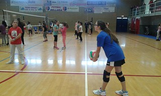 a.s 2015 2016 Volley