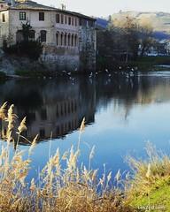 Saint-Pierre-de-Bœuf (Pilat - France) #saintpierredeboeuf #village #river #rhone #viarhona #reflection #reflet #water #country #countryside #countrylife #campagne #digitalnomads #pilat #pilatmonparc #loiretourisme #rhonealpes #france #ig_france #igersfran