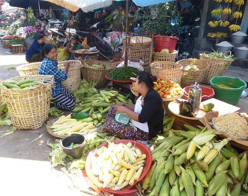 Birmanie-Yangon-Twante-Marche (1)