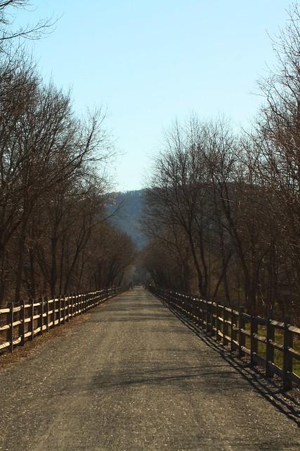 Pine Creek Rail Trail