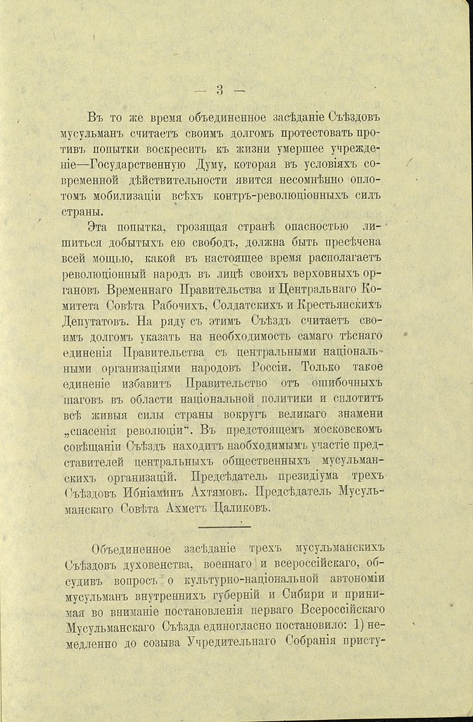 1917. Общемусульманская платформа демократического и социалистического блока_Страница_3