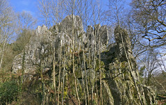 Armorican Sandstone Outcrops - Photo of Sainte-Marie-du-Bois