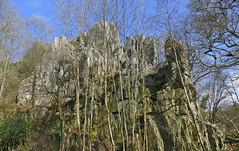 Armorican Sandstone Outcrops