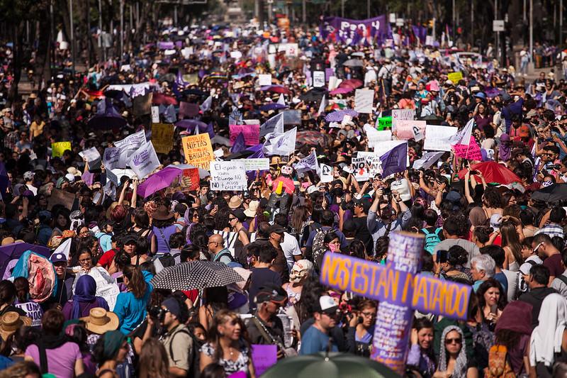 #24A - La primavera se pintó de violeta en todo el país