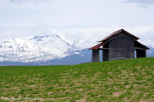 十勝岳と赤い屋根の小屋1