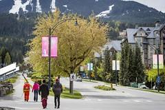 Whistler village in spring.