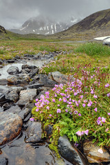 Chugach State Park and National Forest