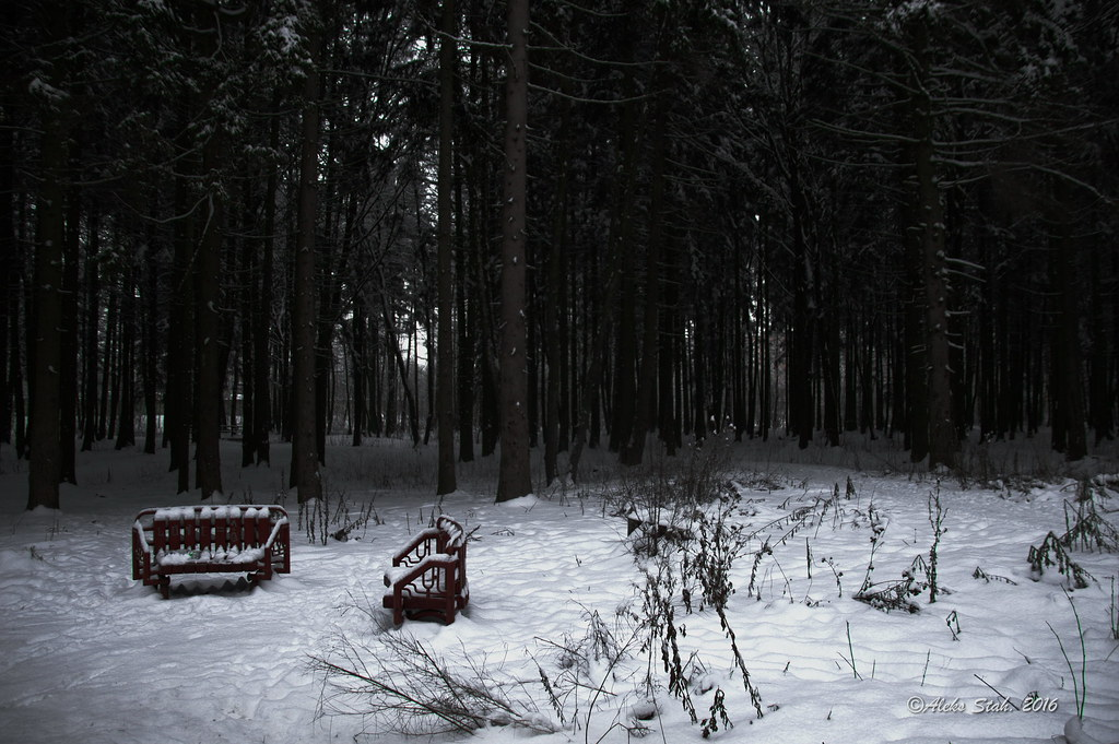 50 оттенков зимы 026