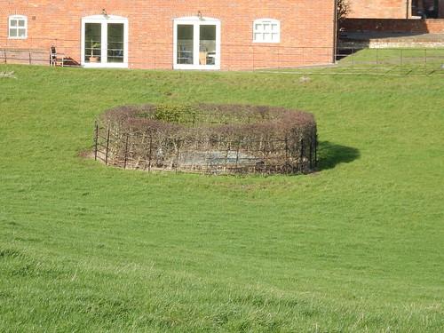 Strange circular hedge
