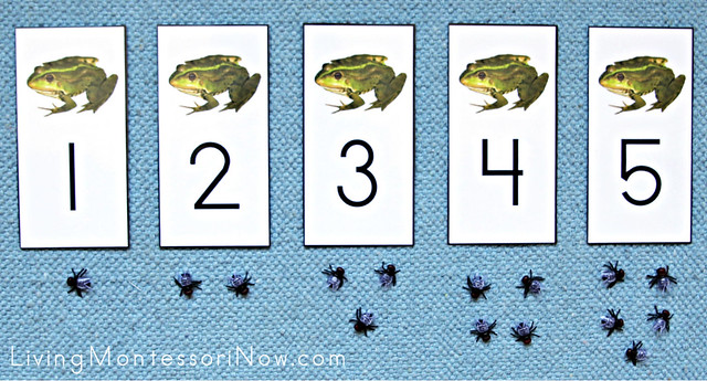 Frogs and Flies Cards and Counters Layout