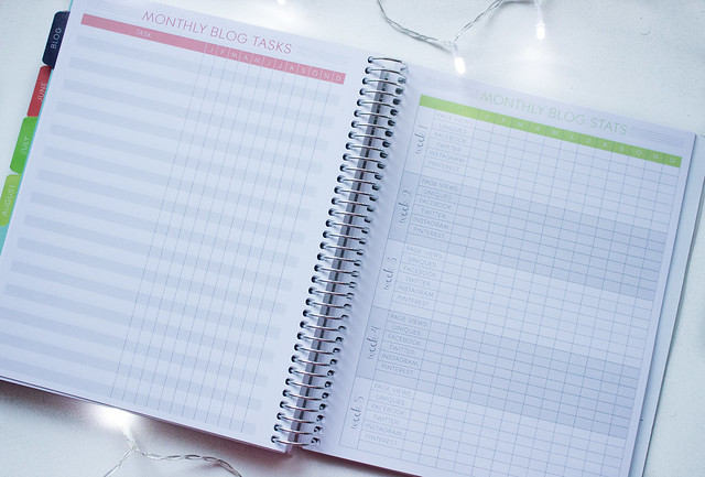 Paper Plum planner blog statistics page
