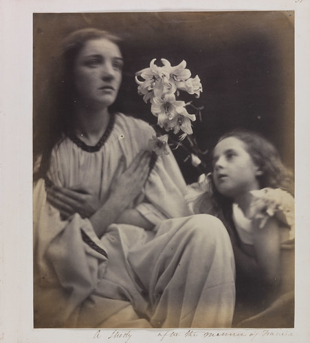 A Study after the Manner of Francia, 1865, Julia Margaret Cameron © National Media Museum, Bradford