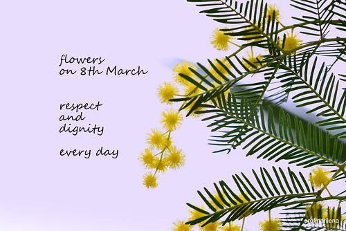 1-DSC_4826 Woman's day - fiori l'8 marzo, rispetto e dignità ogni giorno