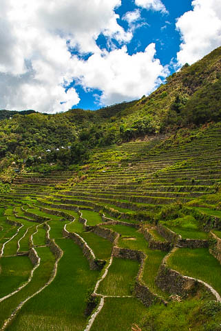 Batad Rice terraces 1