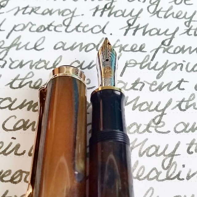 May they be safe and protected. #writtenmeditation #gratefulness #gratitutejournal #mindfulness #lovingkindness #pelikansouverän #pelikan #fountainpen #funtainpen #Fpgeeks #FPN #fountainpennetwork #m620 #sanfrancisco #montblanc #jonathanswift