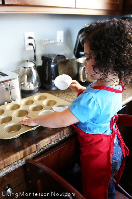 Placing the Muffin Cups in the Muffin Pans