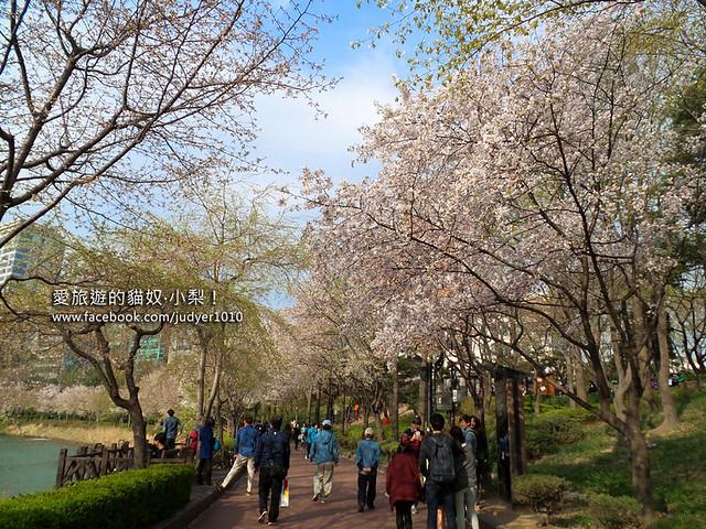 20140404_152051石村湖水公園