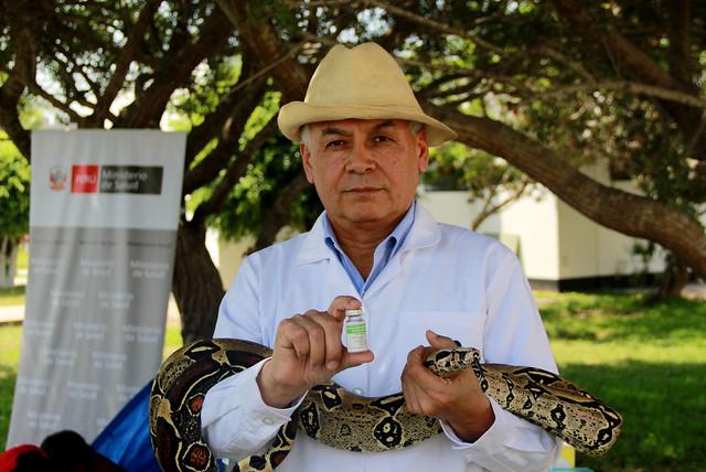 Se recomienda prevenir mordeduras por serpientes venenosas por el Fenómeno El Niño