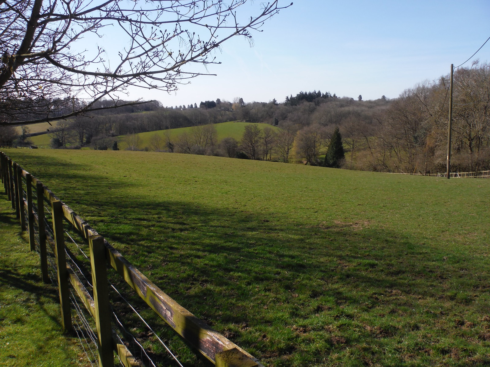View from Oakwood Farm SWC Walk 260 Aldermaston to Woolhampton [Midgham Station] (via Frilsham)