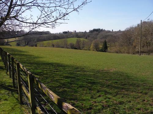 View from Oakwood Farm