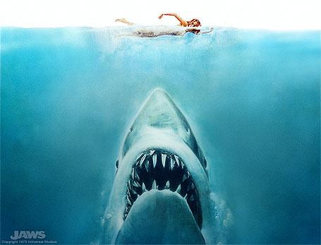 les-dents-de-la-mer-seraient-elle-aussi-aiguisees-aujourd-huim38470