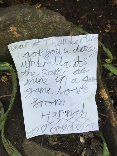 Fairy note