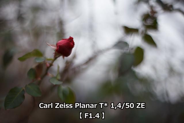 20160415_43_TEST3_ZEISS50F14_F14