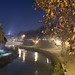 Am Tiber by OKy-Photography
