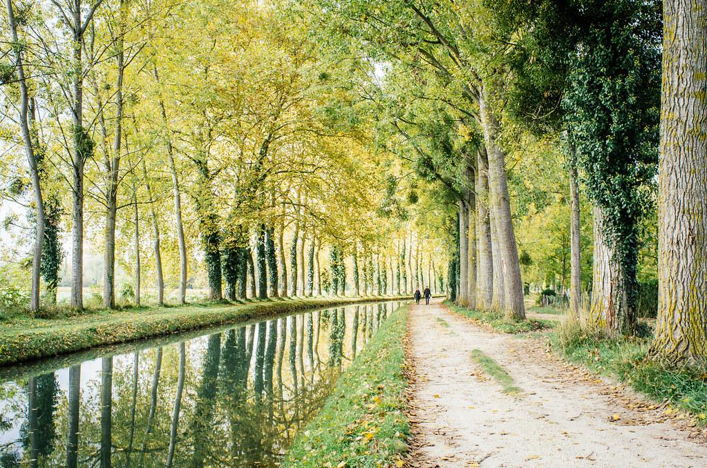 Carnet de voyage en Sologne - Le long du canal de Berry
