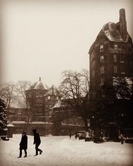Walking Through The Blizzard