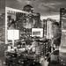 DSCF9314-Edit-2.jpg by Mike Tittel