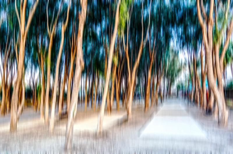 Bosque fantasmagorico
