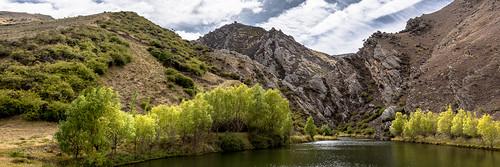 trees mountain lake water landscape pond rocks hills otago