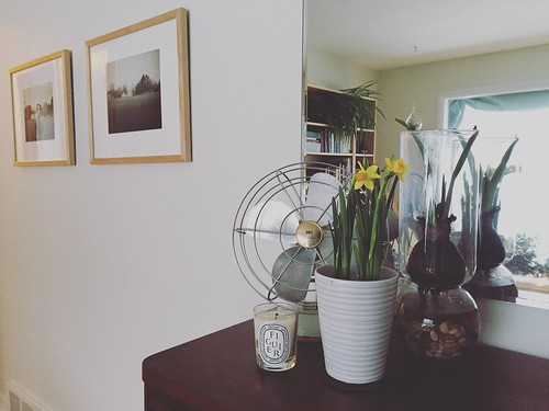 a little spring for this winter day #apartmenttherapy