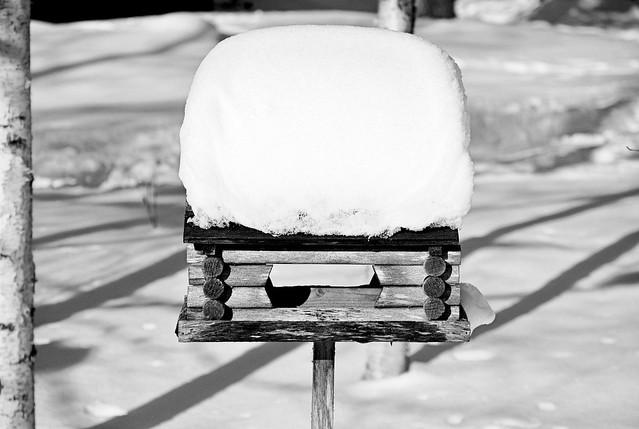 Winter_February_2016-2