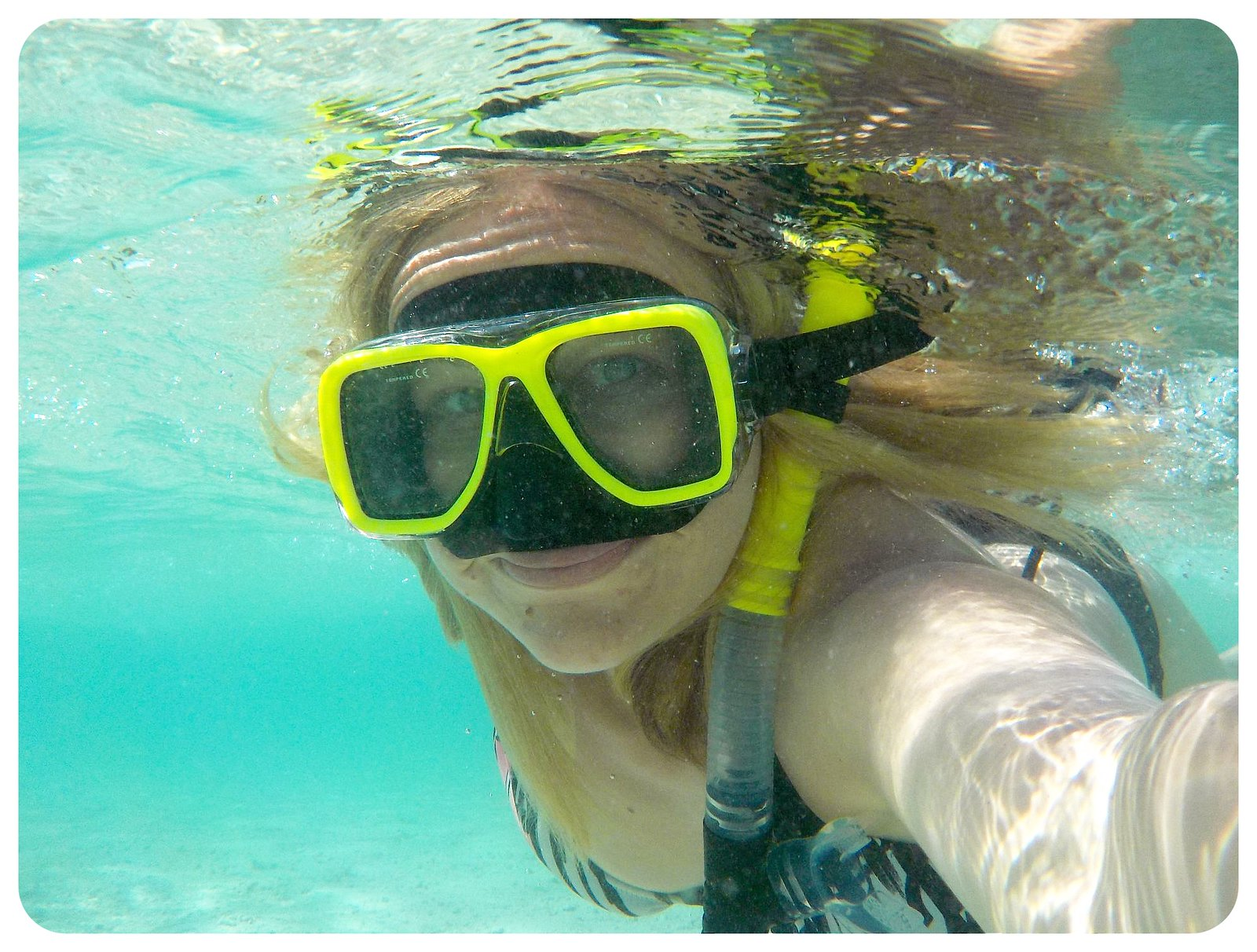dani underwater