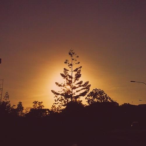 africa sunset sky nature silhouette africansunsets igers igdaily vscocam skyviewers uploaded:by=flickstagram kenya365 igafrica igkenya instagram:photo=672435325633358003227669921 instagram:venuename=gardenestate2cthomev instagram:venue=37256283