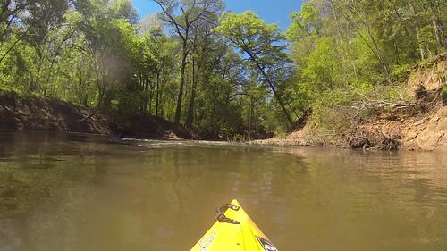 Paddling Turkey Cree and Stevens Creek