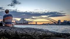 Opera House and Harbour Bridge Pano Crop