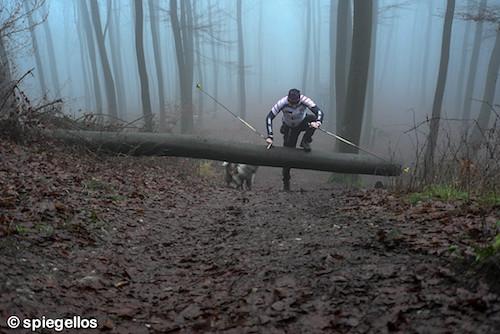 Trailrun-15