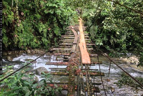 bridge river landscape ecuador riotatala