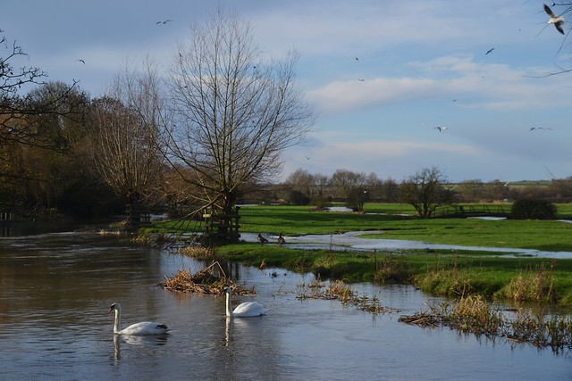 Denford, High Water.