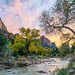 Sony A7RII Zion National Park The Watchman Autumn Dr. Elliot McGucken Fine Art Landscape Photography by 45SURF Hero's Odyssey Mythology Landscapes & Godde